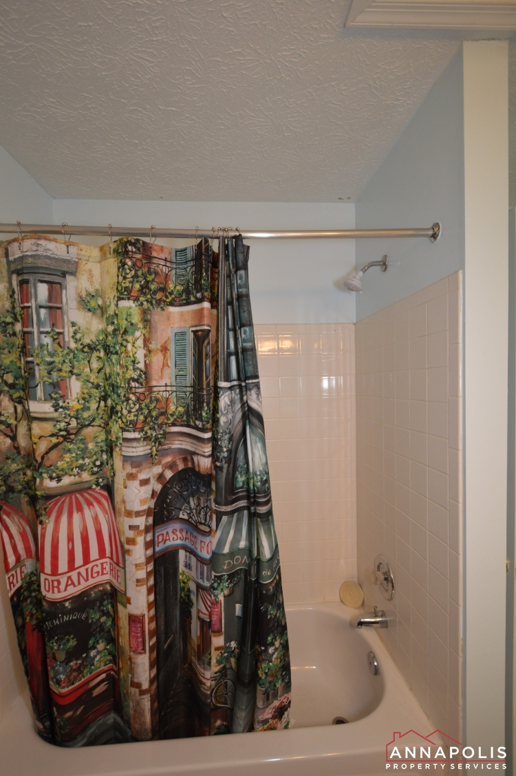 8606 Pine Meadows Drive-Main bath b2.jpg