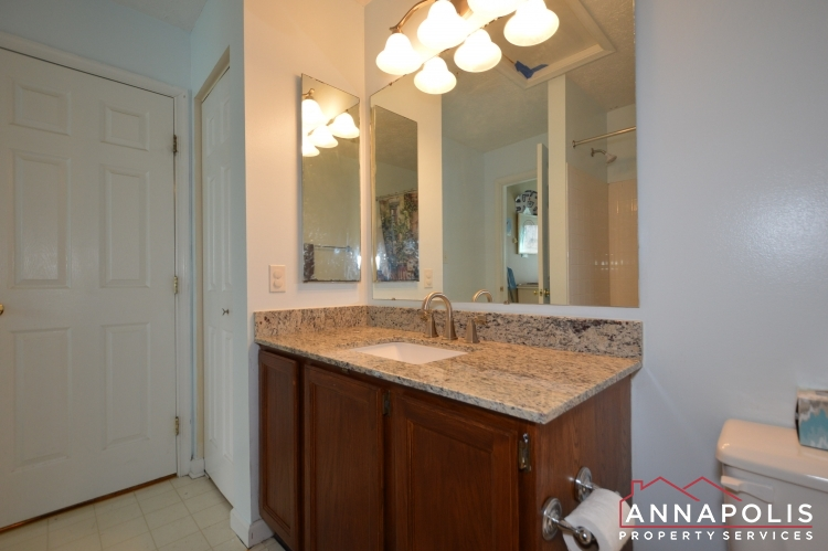 8606 Pine Meadows Drive-Main bath c.JPG