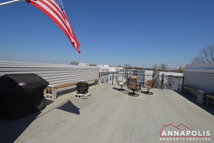 529 Leftwich Lane-Roof top deck a.JPG