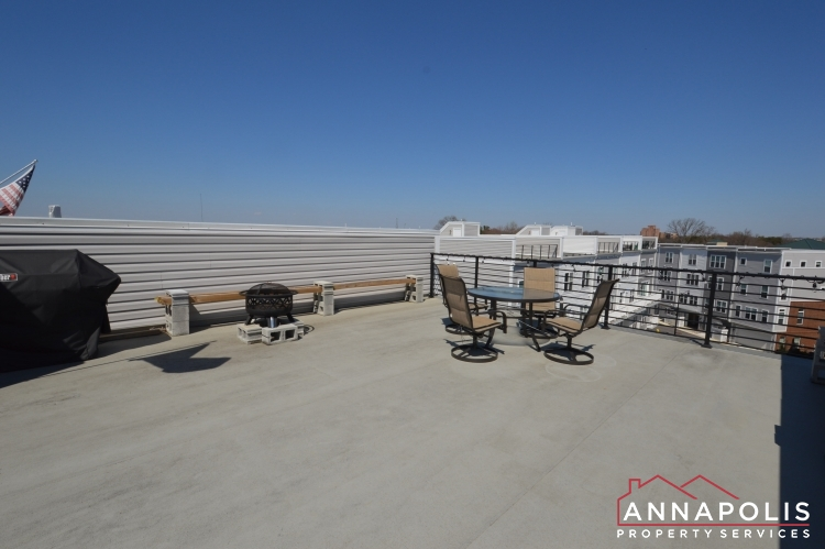 529 Leftwich Lane-Roof top deck b.JPG