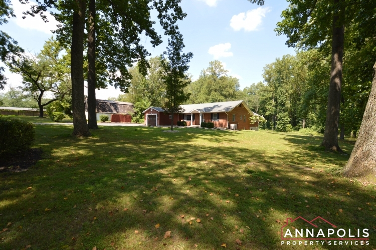 816 Maple Road-Front yard a.JPG