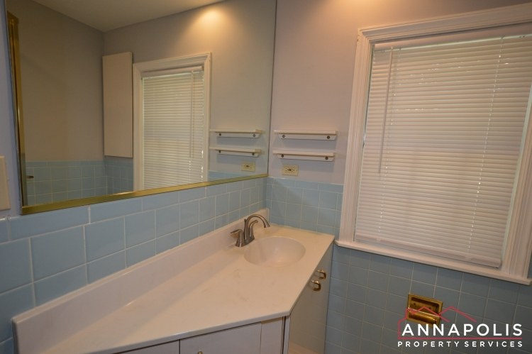 2656 Greenbriar Lane-Lower vanity.JPG