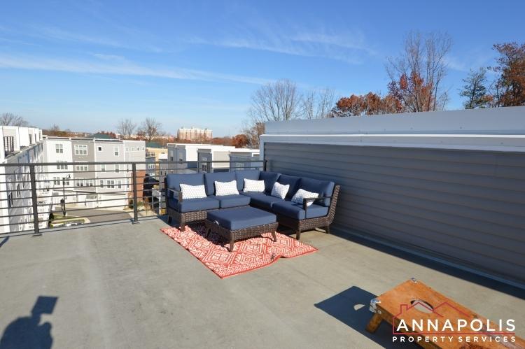 533 Leftwich Lane-Roof top deck a.JPG