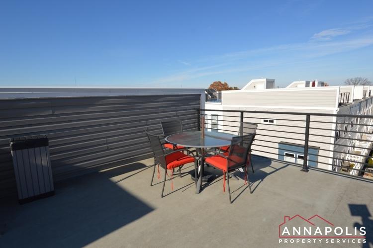 533 Leftwich Lane-Roof top deck b.JPG
