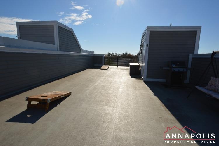 533 Leftwich Lane-Roof top deck c.JPG