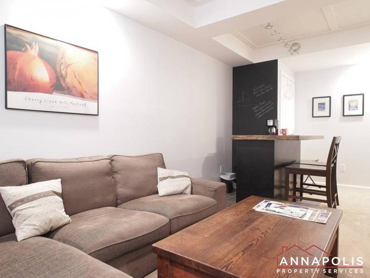 21 City Gate Lane-basement_couch.jpg