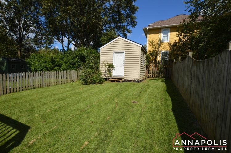 902 Bank St-Back yard and shed.JPG
