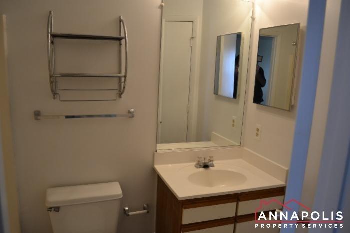 40J Hearthstone Court -main vanity.JPG