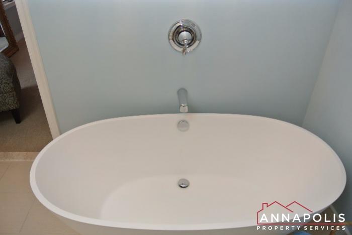 2831 Seasons Way-master tub.JPG
