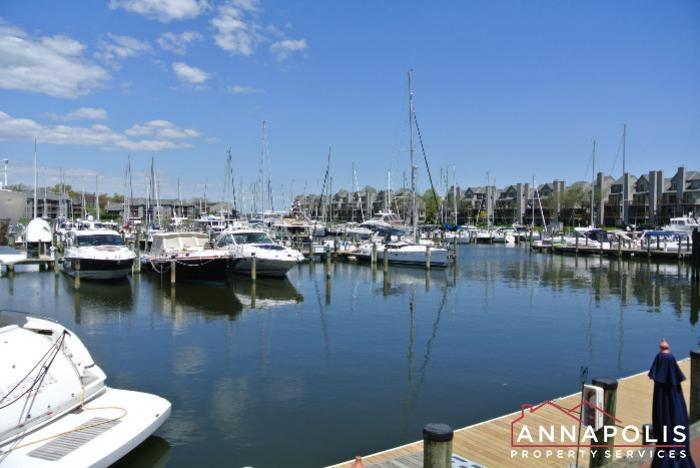 2106E  Chesapeake Harbour -marina b.JPG